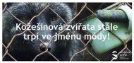 Letáček - Kožešinová zvířata stále trpí ve jménu módy!